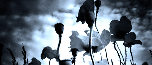 Portal o depresji Wemenders.com